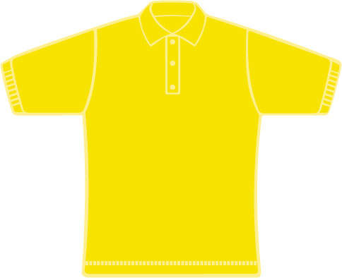 KS016 True Yellow
